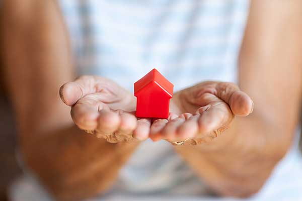 Property law and conveyancing expertise