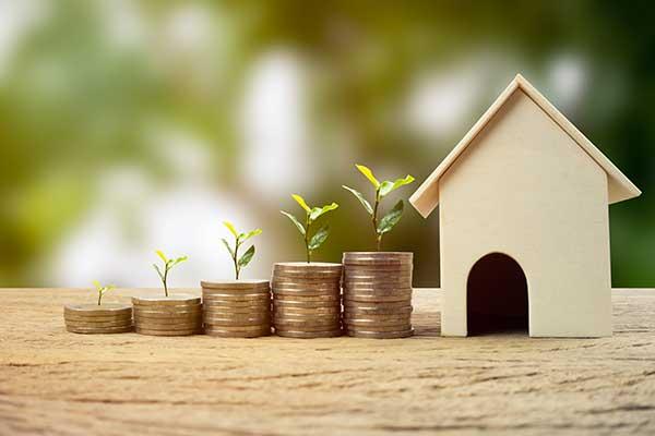 Property investor or developer
